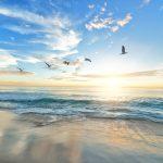 Keep an Eye on Cancun's Northern Shore