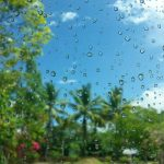 Here's a List of Things To Do When it Rains in Playa del Carmen