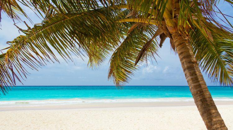 Living in Playa del Carmen vs. Living in Tulum