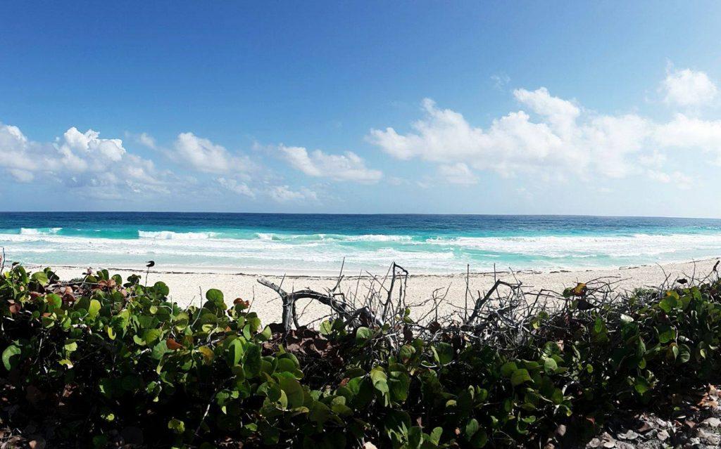 Living in the Riviera Maya Cozumel