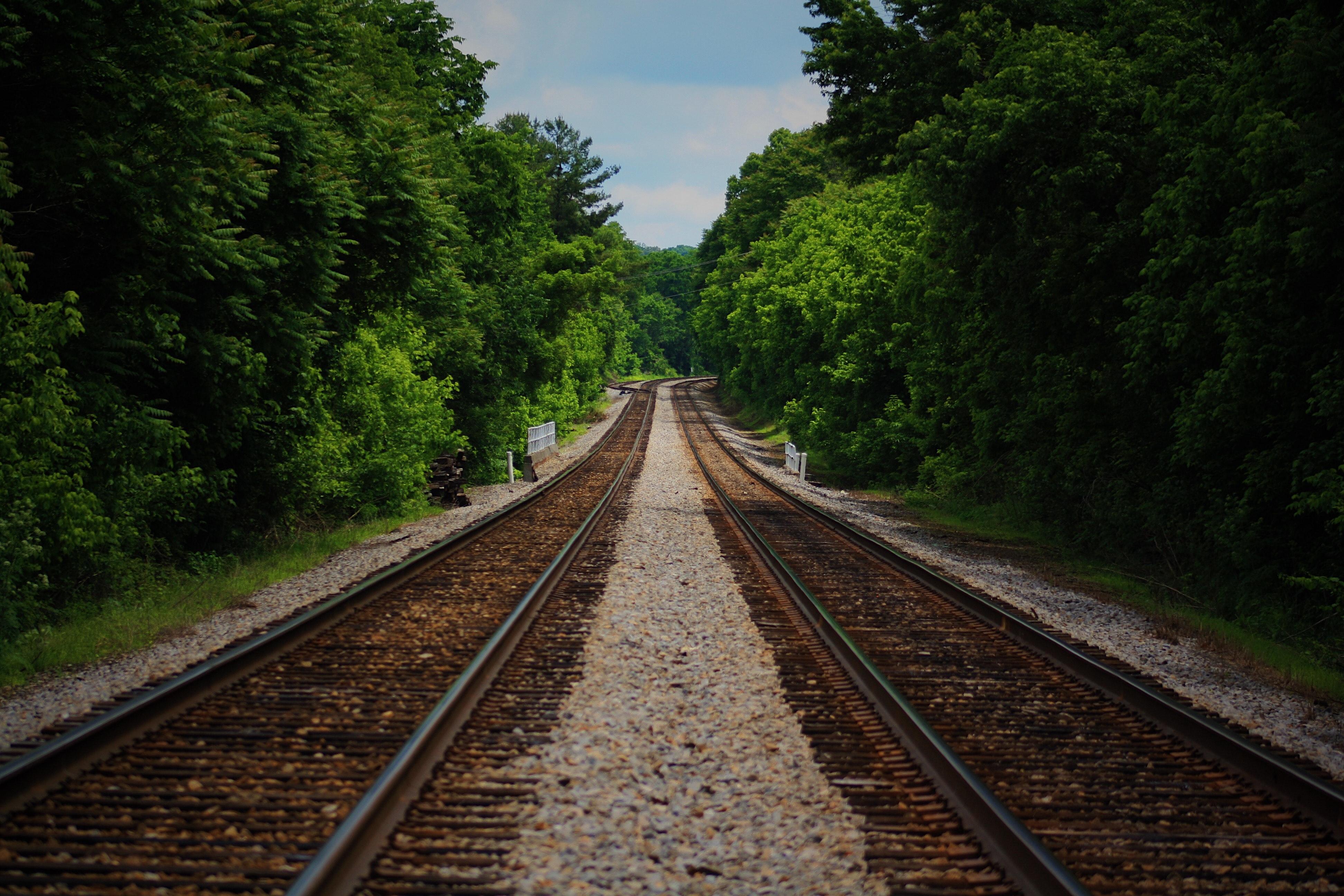 Maya Train Quintana Roo