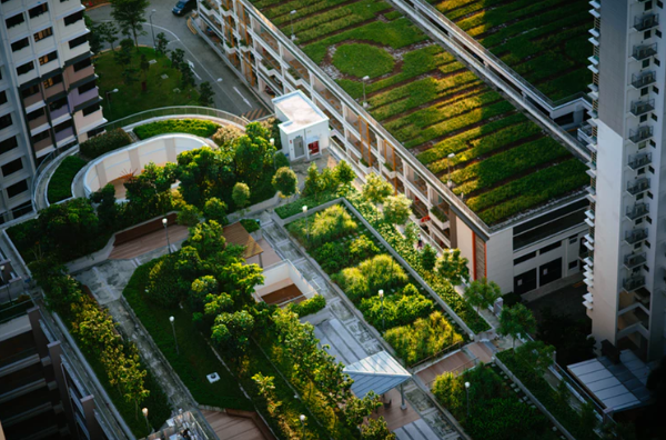 Green and Sustainable Trends