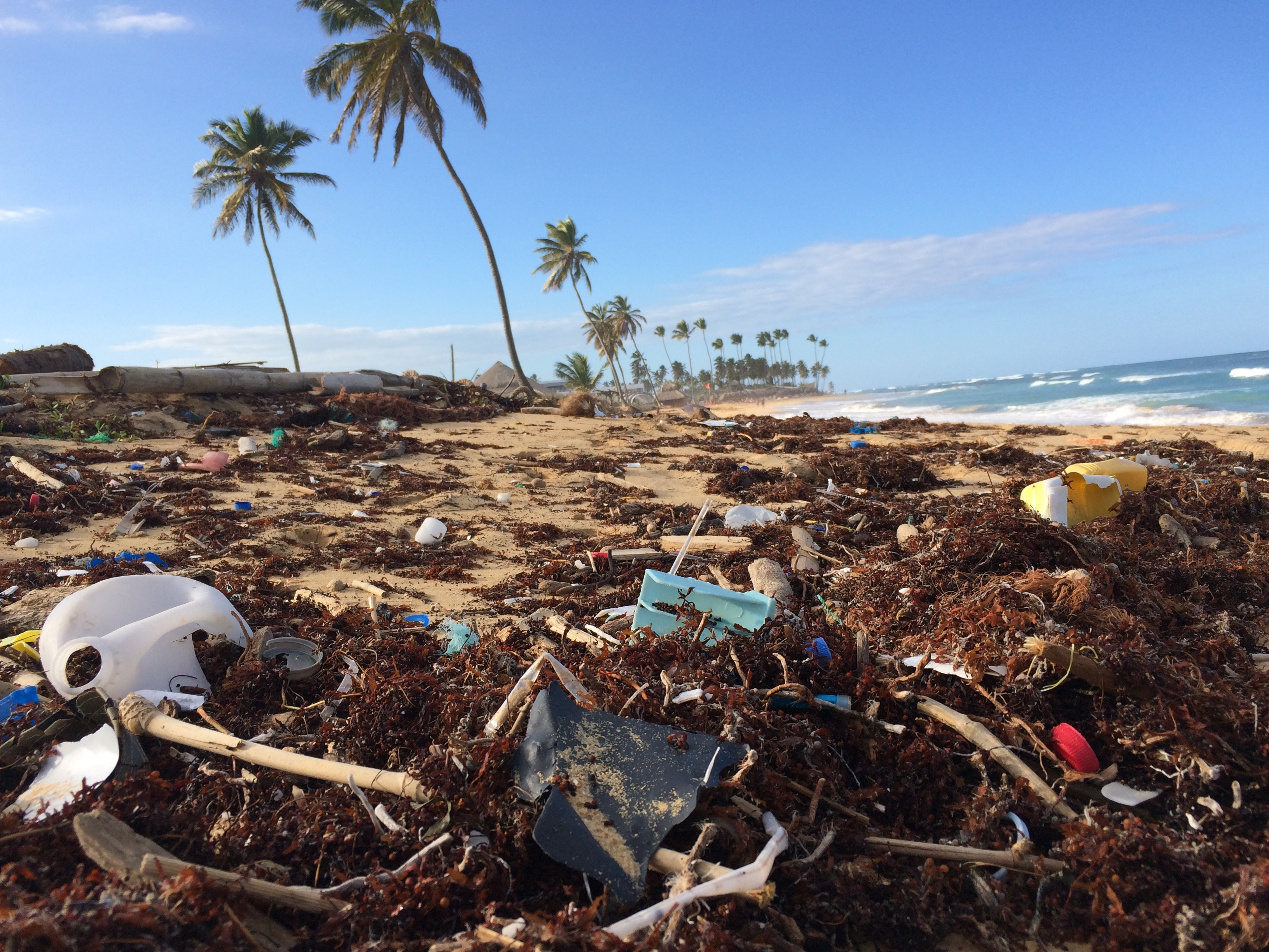 one use plastic banned