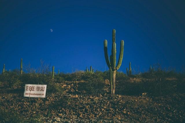 Property Investment in La Paz, Baja California