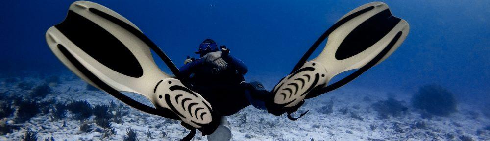 Diving Exp